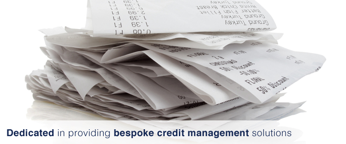 Bespoke credit management solutions